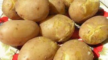 Haşlanmış Patatesin Bozulduğu Nasıl Anlaşılır?
