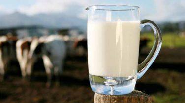 Bozulan Süt Nasıl Değerlendirilir?