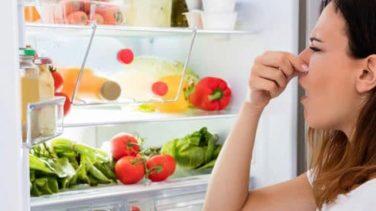 Buzdolabındaki Et Kokusu Nasıl Giderilir?