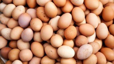 Doğal Yumurta Nasıl Anlaşılır?