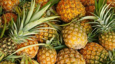 Ananas Nasıl Olgunlaştırılır?