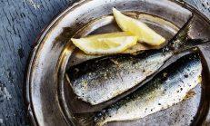 Balık Dolapta Kaç Gün Saklanır?