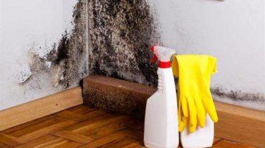Evdeki Rutubet Kokusu Nasıl Yok Edilir?