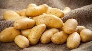 Patatesin Filizlenmemesi İçin Ne Yapılmalı?