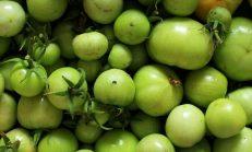 Yeşil Domates Nasıl Kızarır?